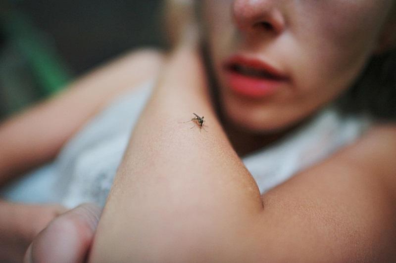 Casos de malária sobem para 52 em Itabela