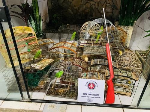 PM liberta animais silvestres mantidos em cativeiro em Ilhéus